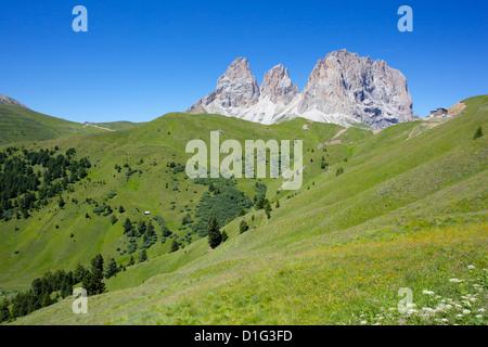 Sassolungo Group, Sella Pass, Trento and Bolzano Provinces, Italian Dolomites, Italy, Europe - Stock Photo