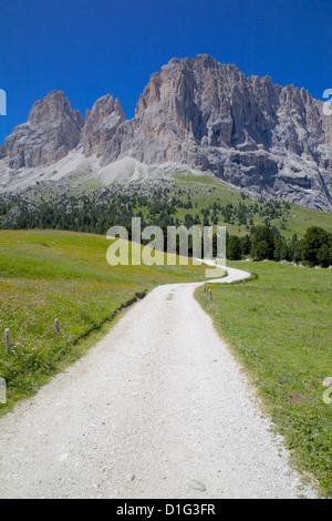 Sassolungo Group and path, Sella Pass, Trento and Bolzano Provinces, Italian Dolomites, Italy, Europe - Stock Photo