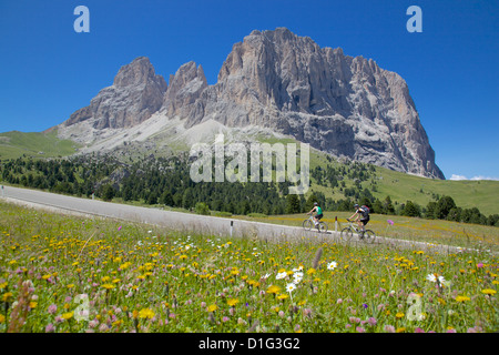 Cyclists and Sassolungo Group, Sella Pass, Trento and Bolzano Provinces, Italian Dolomites, Italy, Europe - Stock Photo