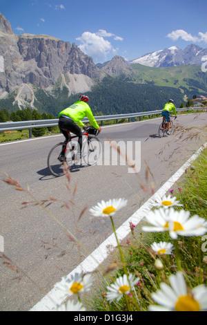 Cyclists, Sella Pass, Trento and Bolzano Provinces, Italian Dolomites, Italy, Europe - Stock Photo