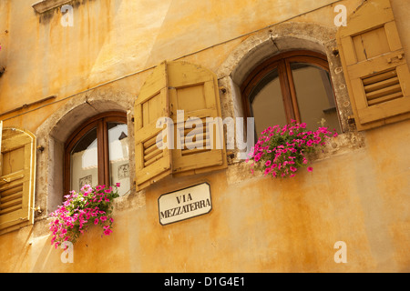 Shuttered windows and flowers, Piazza Mercato, Belluno, Province of Belluno, Veneto, Italy, Europe - Stock Photo