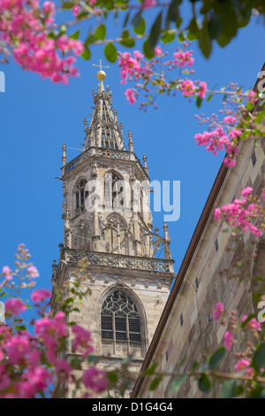 Duomo, Walther Platz, Bolzano, Bolzano Province, Trentino-Alto Adige, Italy, Europe - Stock Photo