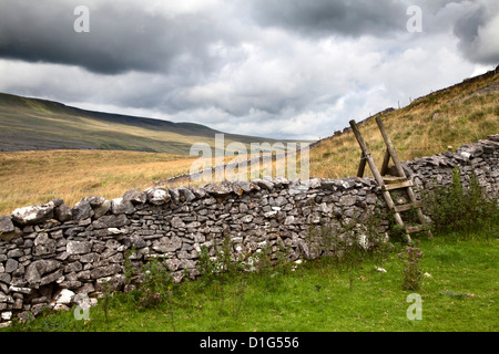 Dry stone wall and ladder stile at Twisleton Scar near Ingleton, Yorkshire Dales, North Yorkshire, Yorkshire, England - Stock Photo