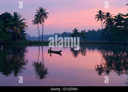 Dawn over the backwaters, near Alappuzha (Alleppey), Kerala, India, Asia - Stock Photo