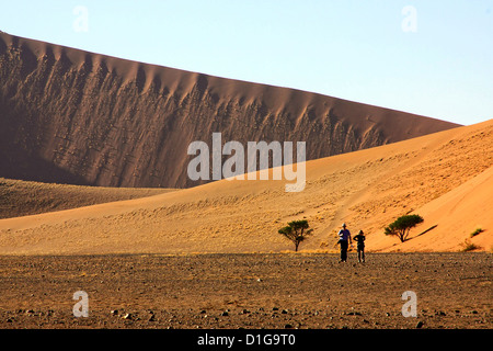 Two tourists dwarfed by vast sand dunes in the Namib Naukluft Park - Stock Photo