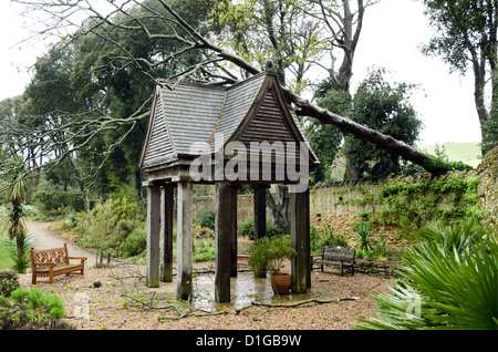 Storm damage at Abbotsbury garden. A tree blown over lands on a building - Stock Photo