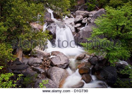Waterfall in the woods, Yosemite National Park, Yosemite, California, United States of America, North America - Stock Photo
