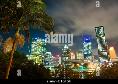 Palm tree and Brisbane skyline at night, Brisbane, Queensland, Australia, Pacific - Stock Photo