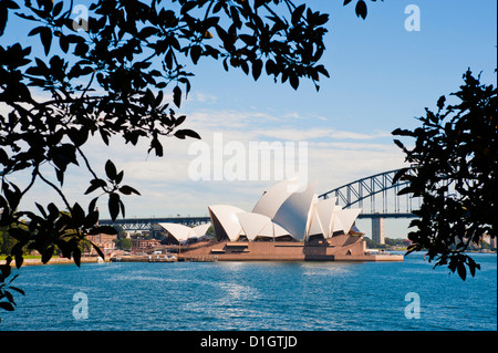 Sydney Opera House, and bridge from the Sydney Botanic Gardens, Sydney, New South Wales, Australia, Pacific - Stock Photo