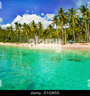Turquoise water and palm trees lining Nippah Beach, Indonesia, Southeast Asia, Asia - Stock Photo