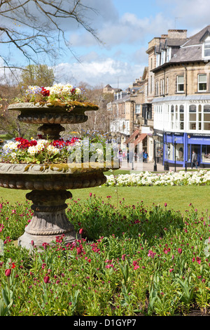 Harrogate North Yorkshire England - Stock Photo