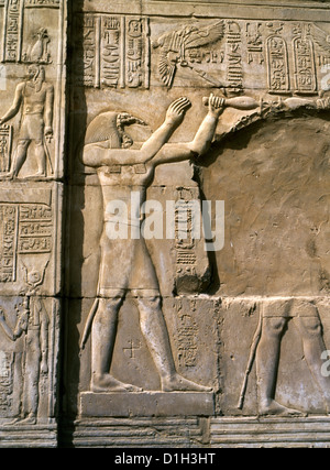 Kom Ombo Egypt Temple of Haruris and Sobek Carving of Thoth God of Wisdom - Stock Photo