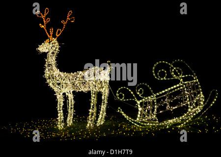 Shining christmas reindeer at night - Stock Photo