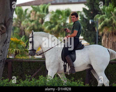 rider of Andalusian   high school horse - Stock Photo