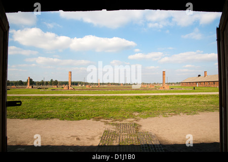 View across the former Auschwitz II–Birkenau concentration camp in southern Poland. - Stock Photo