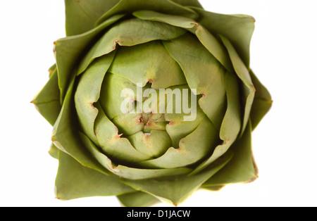 Fresh whole artichoke isolated on white background - Stock Photo