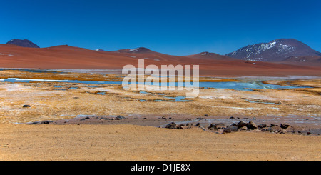 Salar de Tara - Panorama of Atacama Desert - Stock Photo