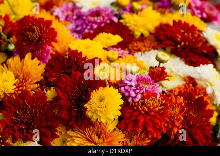 Flower Bouquet on a Market in Hamburg, Germany - Stock Photo