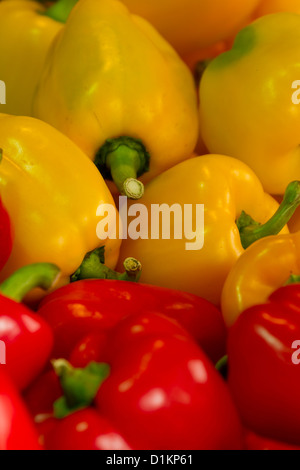 Pepper on a Market in the Schanzenviertel of Hamburg, Germany - Stock Photo