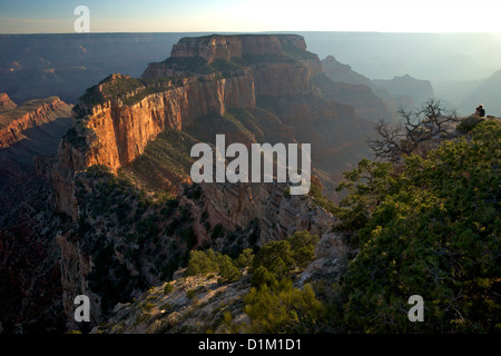 Young couple enjoying the view from Cape Royal, North Rim, Grand Canyon National Park, Arizona, USA - Stock Photo