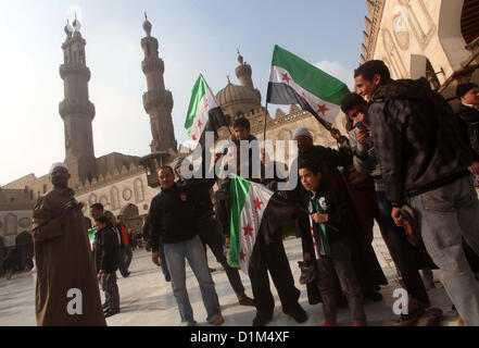 Dec. 28, 2012 - Cairo, Cairo, Egypt - Egyptian protestors gather during a rally in support of the Syrian people - Stock Photo