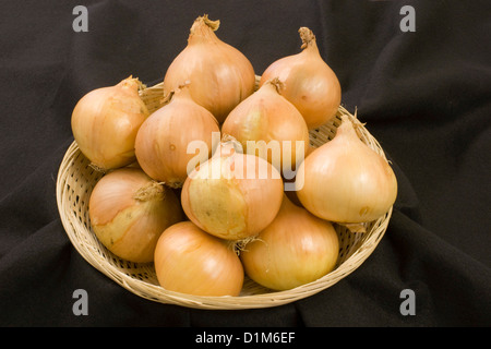 Basket of Onions - Stock Photo