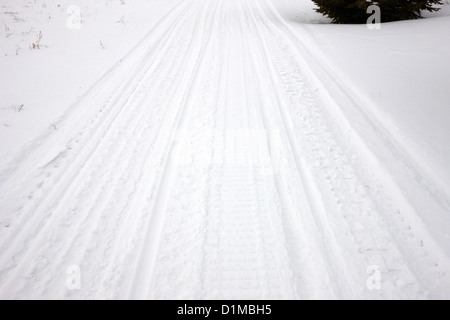 snowmobile tracks in the snow Kamsack Saskatchewan Canada - Stock Photo