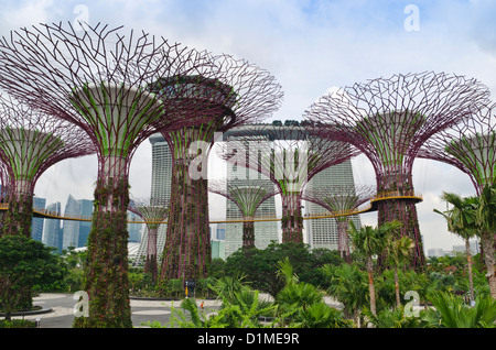 Singapore Supertree Grove at Gardens by the Bay with the Marina Bay Sands in the background, Singapore - Stock Photo