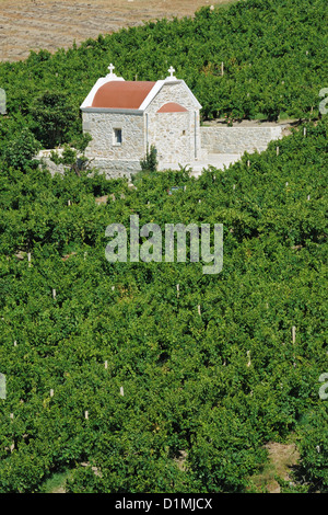 A church in the middle of a wineyard in Crete, Greece - Stock Photo