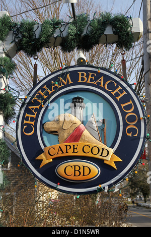 Sign for Chatham Beach Dog, a store with toys and treats for dogs, in Chatham, Cape Cod, Massachusetts - Stock Photo