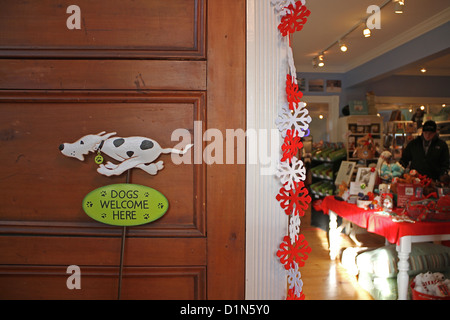 Entrance to Chatham Beach Dog, a store selling toys and treats for dogs, in Chatham, Cape Cod, Massachusetts - Stock Photo