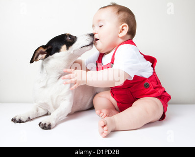 baby girl with dog - Stock Photo