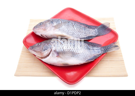Two crucian carp on plate - Stock Photo