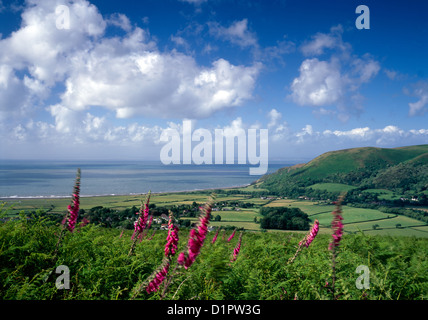 A view of Porlock Bay on the Somerset coast, photographed from Crawter Hill. - Stock Photo