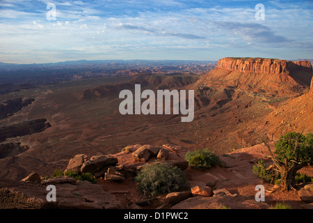 Grand View Point Overlook, Canyonlands National Park, Utah, USA - Stock Photo