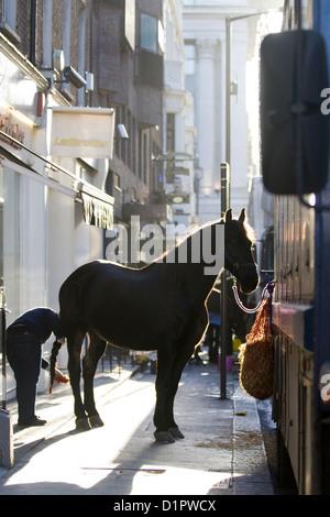 Horse on the streets of London Equus ferus caballus - Stock Photo