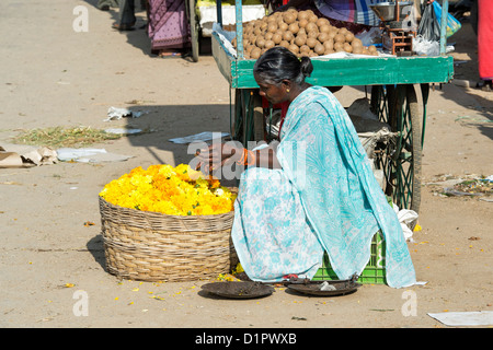 Indian woman selling Marigold flowers in a basket for hindu puja offerings. Andhra Pradesh, India - Stock Photo