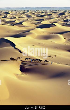Morocco, M'Hamid, Erg Chigaga sand dunes. Sahara desert. Camel drivers and camel caravan. - Stock Photo