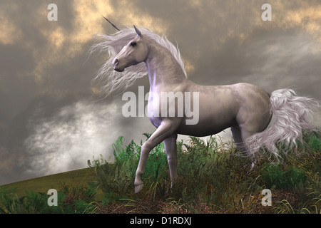 Clouds and mist surround a beautiful unicorn stallion with a white coat. - Stock Photo