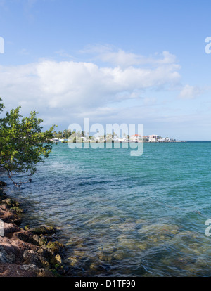 Homes by roadside in Florida Keys by Route 1 Overseas Highway - Stock Photo