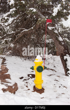 A wilderness area fire hydrant with visual identification flagpole in case snow covers the hydrant. - Stock Photo
