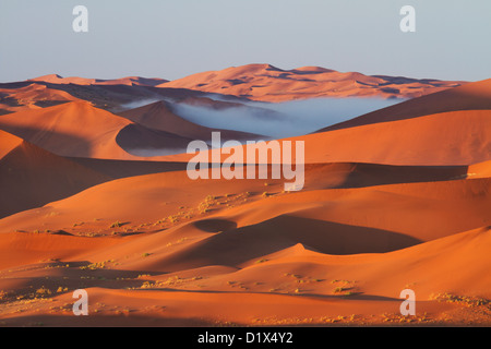 Morning view from dunes at Sossusvlei in Namibia - Stock Photo