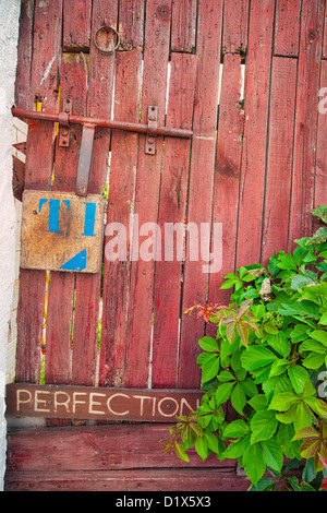 A crooked makeshift red door with a perfection sign on it is next to a hydrangea bush creating a scene with high - Stock Photo