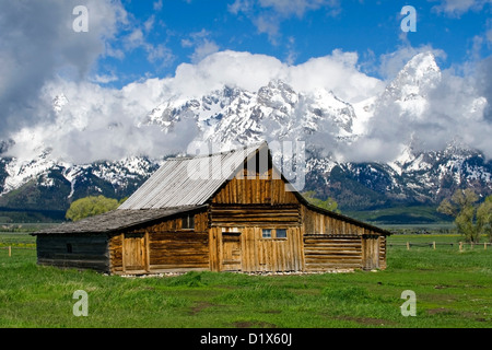pin better hell i and place all but is some you glamping am no would why cabins there obsessed wyoming ask people it teton see with the go in moved tell grand