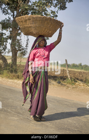 Tribal woman carrying basket on her head. Khalwa, Madhya Pradesh, India - Stock Photo