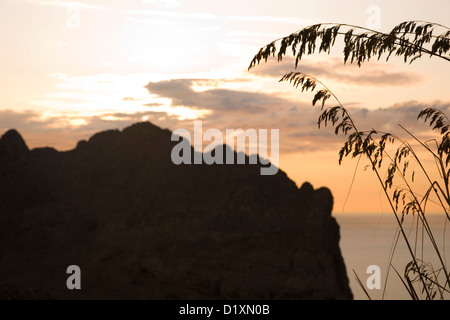 Port de Pollença, Mallorca, Balearic Islands, Spain. Jagged crest of the Serra del Cavall Bernat at sunset, Formentor Peninsula.