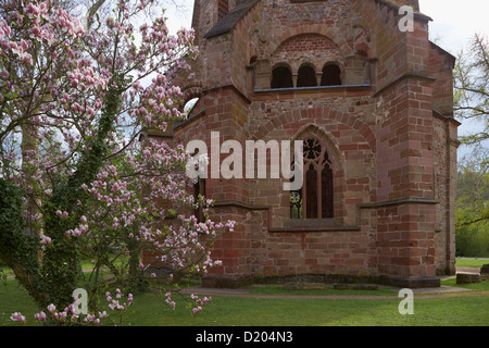 Blooming magnolia at the old tower in the park of the old abbey, adventure center Villeroy & Boch, Mettlach, - Stock Photo