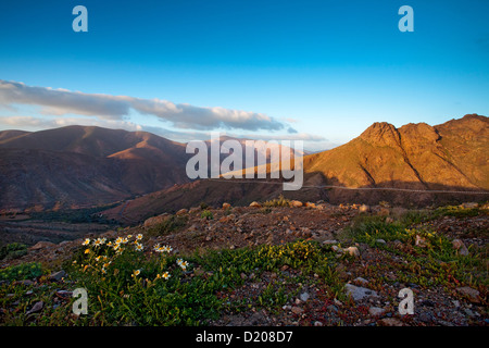Overlook from Viewpoint Degollada de Los Granadillos, Fuerteventura, Canary Islands, Spain - Stock Photo