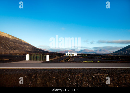 House in vineyards on volcanic soil, La Geria, Lanzarote, Canary Islands, Spain, Europe - Stock Photo