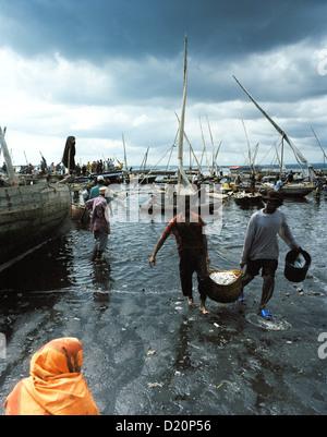 Fish market at the old Dhow harbour, fisher boats get unloaded, Malindi, Zanzibar Town, Zanzibar, Tanzania, East - Stock Photo